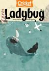 Ladybug Ages 2 to 6 Magazine Subscription