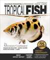Best Price for Tropical Fish Hobbyist Magazine Subscription