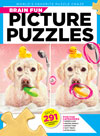 Best Price for Brain Fun Picture Puzzles Magazine Subscription