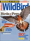 Wildbird Magazine