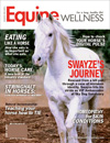 Best Price for Equine Wellness Magazine Subscription