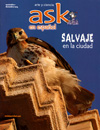 Ask en espanol magazine