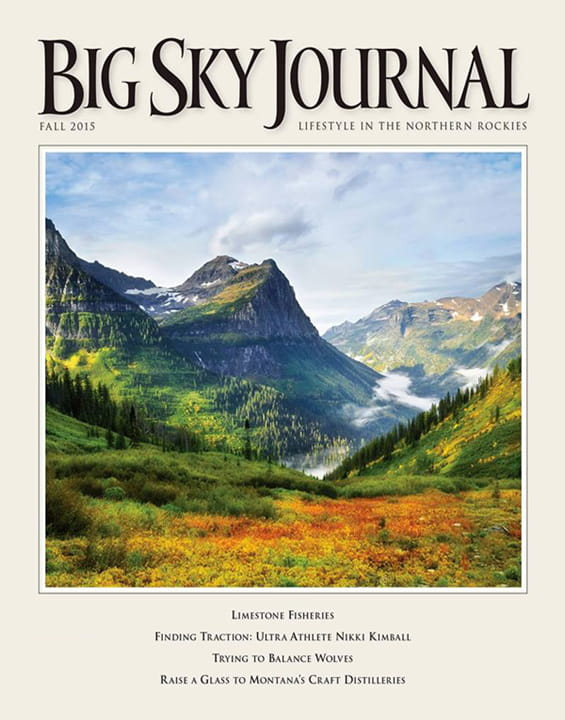 Image result for big sky journal