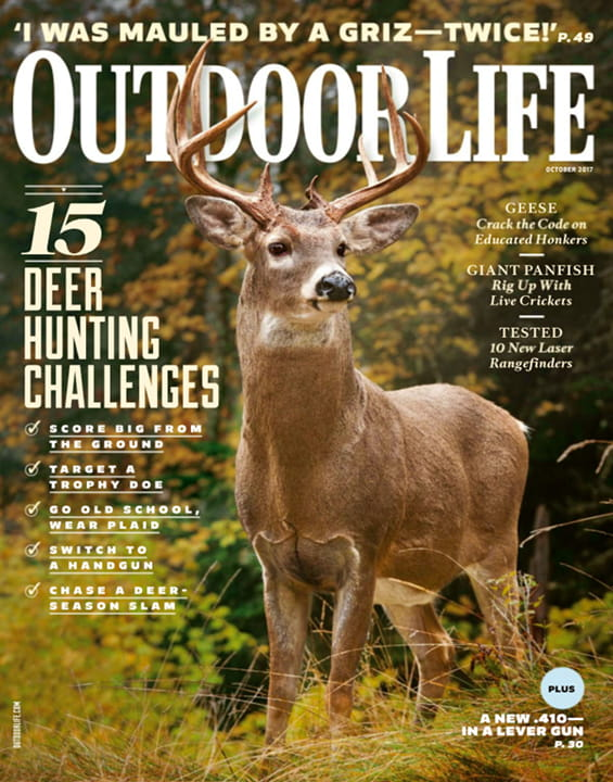 Outdoor life Magazine DECEMBER 1971 Moose Ten Feet Talk