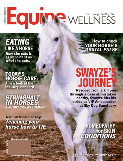 Subscribe to Equine Wellness