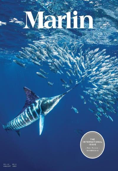 Subscribe to Marlin