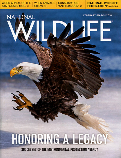 Subscribe to National Wildlife