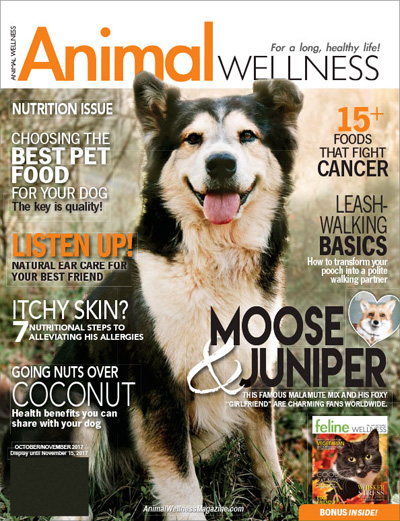Subscribe to Animal Wellness