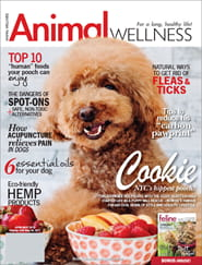 Animal Wellness3