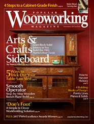 Popular Woodworking Magazine Subscription Magazineline